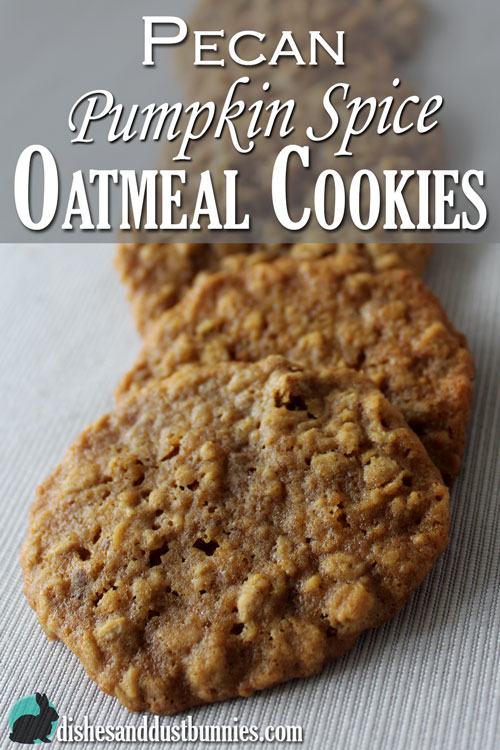 Pecan Pumpkin Spice Oatmeal Cookies