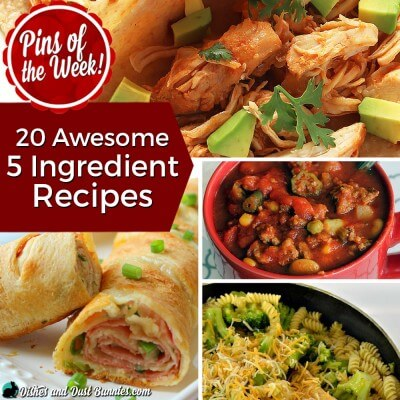 20 Awesome 5 Ingredient Recipes – Pins of the Week