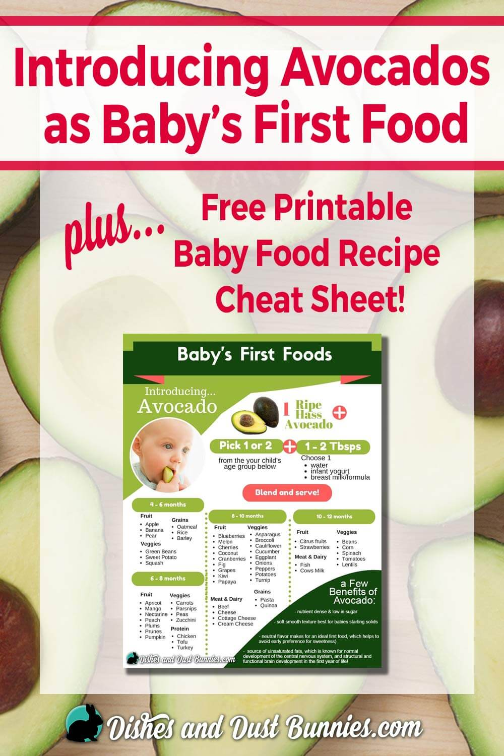 Introducing Avocados as Baby's First Food + Free Baby Food Recipe Cheat Sheet!