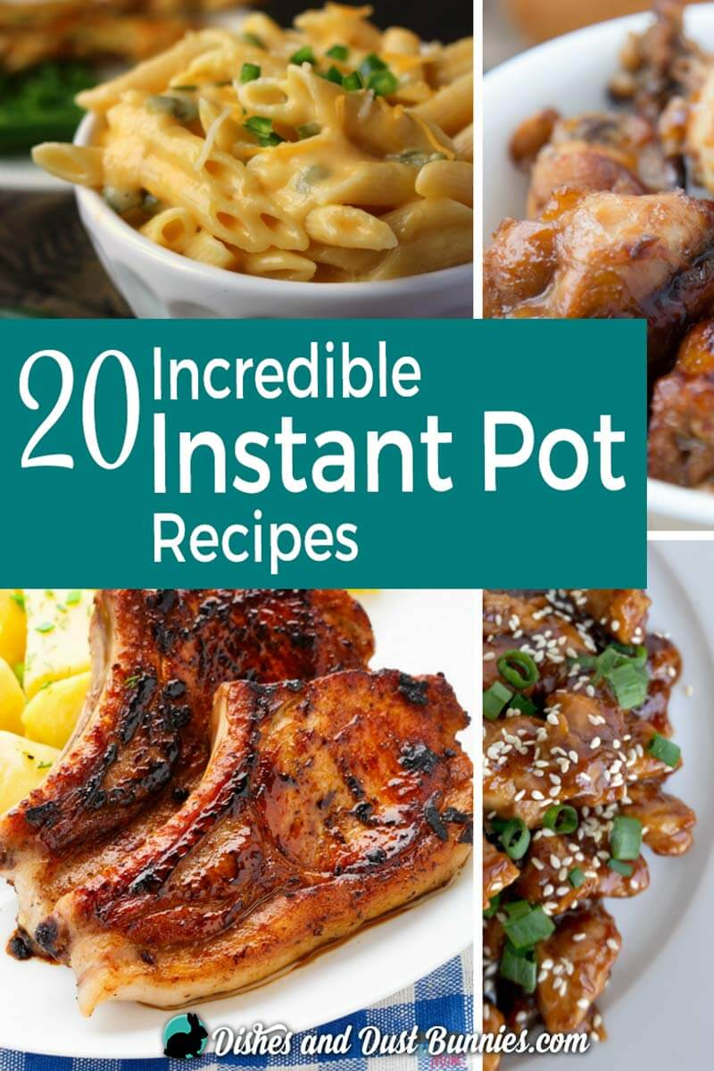 20 Incredible Instant Pot Recipes - dishesanddustbunnies.com