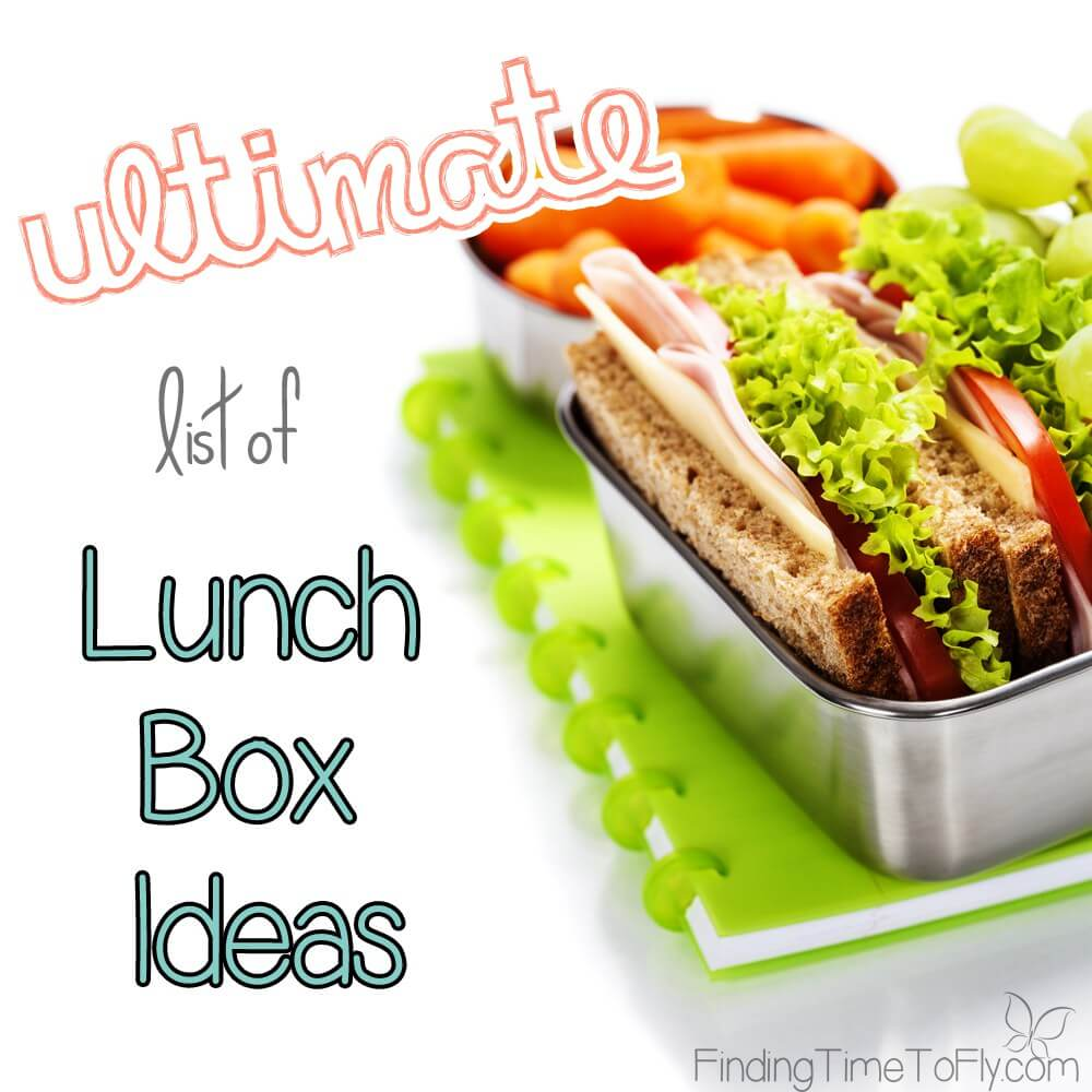 Ultimate List of Lunch Box Ideas from Finding Time to Fly