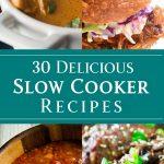 30 Delicious Slow Cooker Recipes - dishesanddustbunnies.com